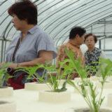 青森市農業振興センター研修会(7月19日)