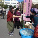 青森中央学院大学学園祭での「がっぱら餅」の提供(9月21日、22日)